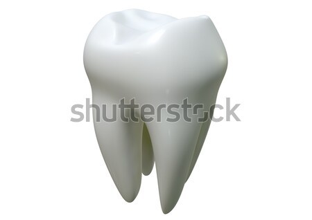 Single Tooth Stock photo © albund