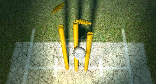 Krikett labda fehér bőr fából készült fű Stock fotó © albund