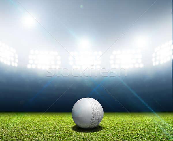 Cricket Stadium And Ball Stock photo © albund
