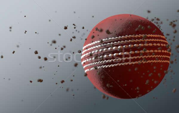 Cricket Ball In Flight Stock photo © albund