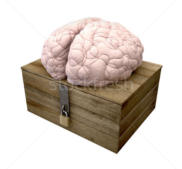 Think Outside The Box Brain Stock photo © albund