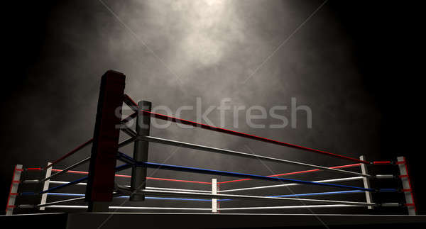 Boxing Ring Spotlit Dark Stock photo © albund