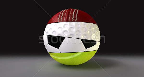 Segmented Round Sports Ball Stock photo © albund