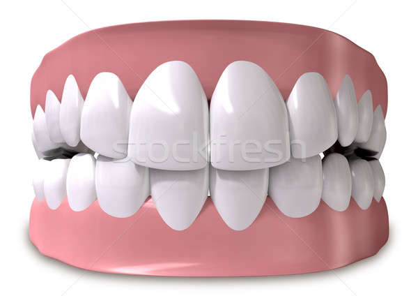 Teeth And Gums Closed Stock photo © albund