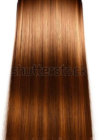 Hair Perfect Straight Stock photo © albund