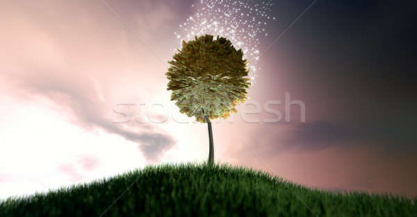 Magical Rand Money Tree Stock photo © albund