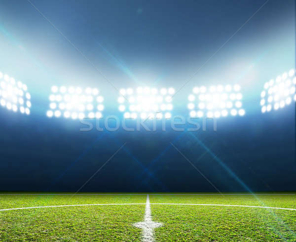 Stadium And Soccer Pitch Stock photo © albund