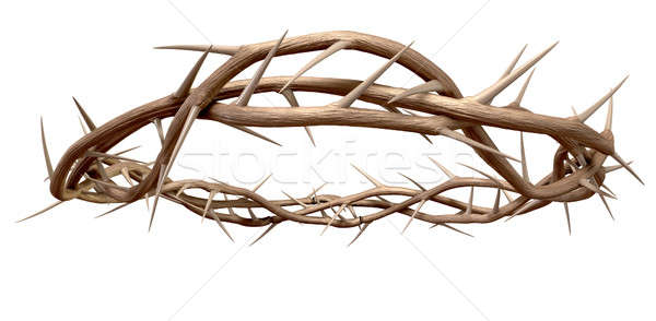 A Crown Of Thorns Stock photo © albund