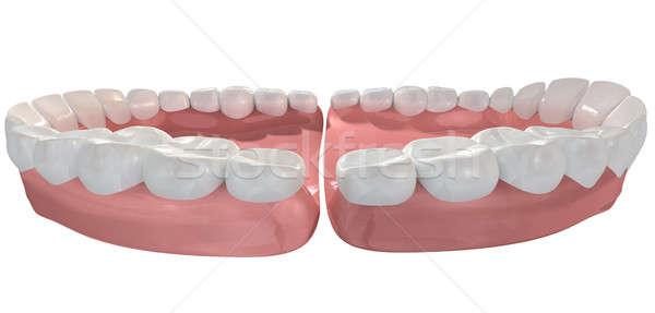 Open False Human Teeth Extreme Closeup Stock photo © albund