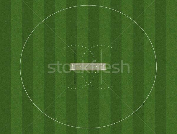 クリケット ピッチ フィールド 白 緑の草 背景 ストックフォト © albund