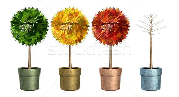 Sezonowy drzew cztery stylizowany glina kwiat Zdjęcia stock © albund