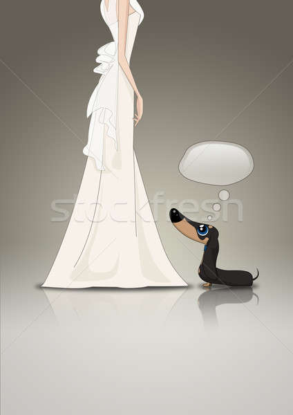 Dachsund and Bride Stock photo © albund