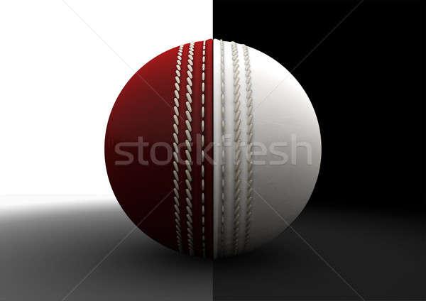 Cricket Ball Split Between Formats Stock photo © albund