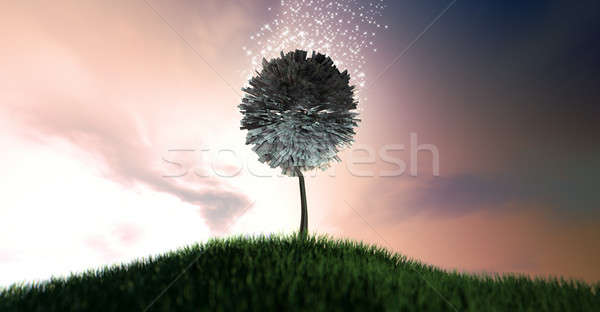 Magical Euro Money Tree Stock photo © albund