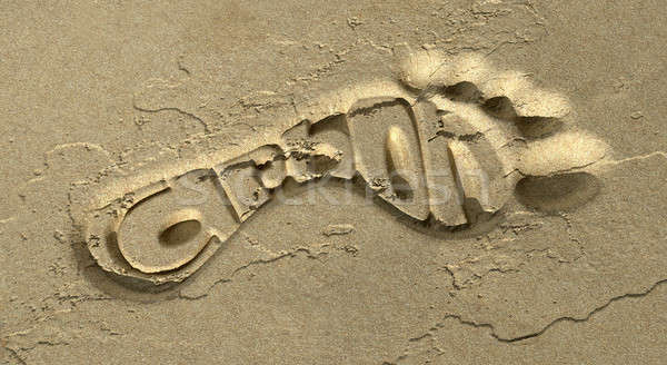 Carbon Footprint In The Sand Stock photo © albund