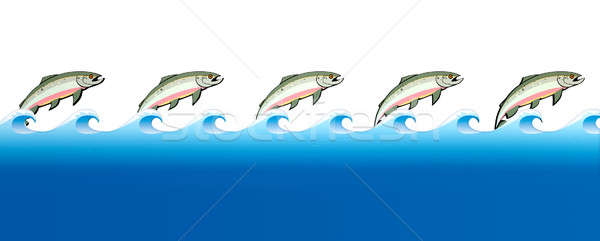 Salmon Swimming Upstream Stock photo © albund