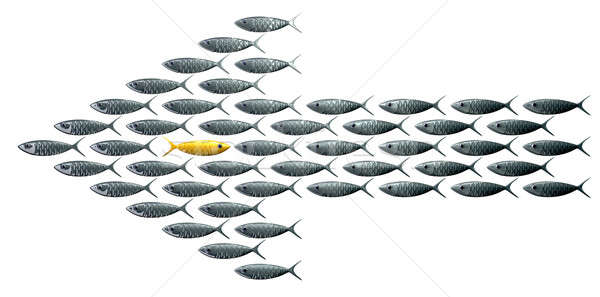 Fish School Arrow Shaped Against The Grain Perspective Stock photo © albund