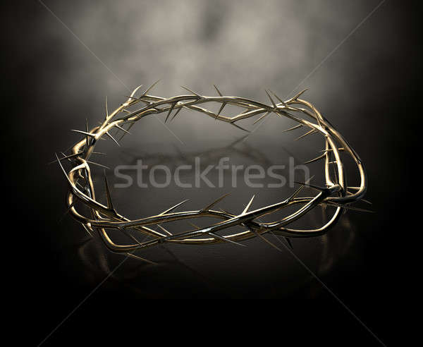 Crown Of Thorns Gold Casting Stock photo © albund