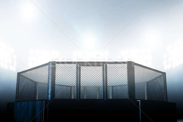 клетке ночь борьбе арена черный место Сток-фото © albund