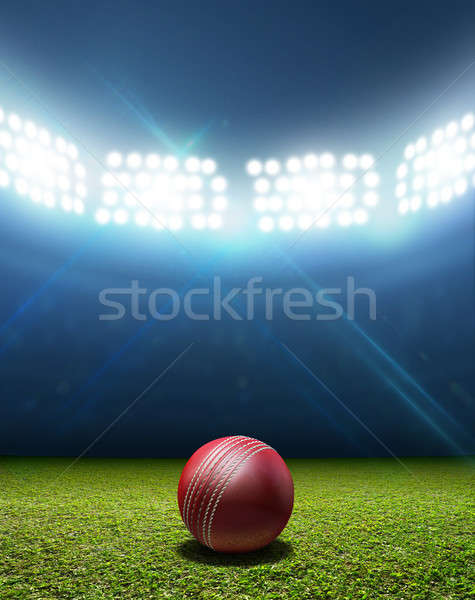 Cricket Stadium And Ball Stock photo © albund