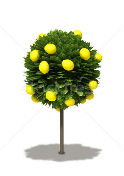 Estilizado limonero Cartoon tipo estándar Foto stock © albund