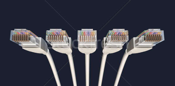 Five Ethernet Cables Unplugged Facing Forwards Stock photo © albund