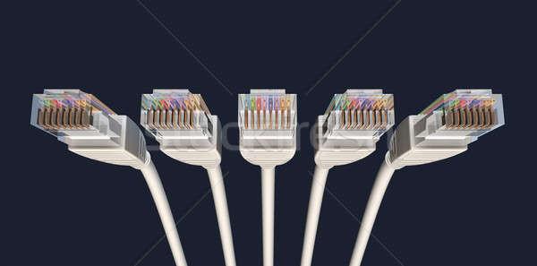 пять Ethernet кабелей мнение Сток-фото © albund