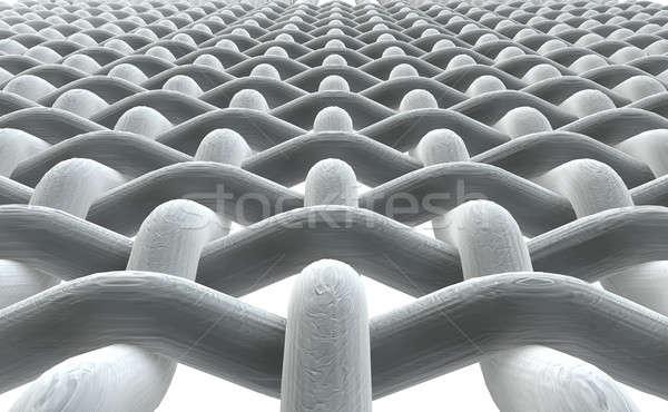 Micro tejido frente blanco cerca microscópico Foto stock © albund