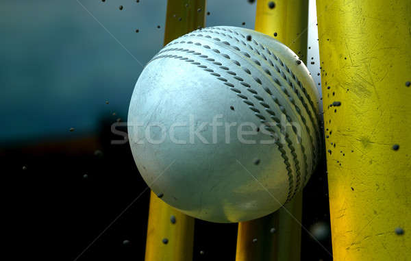 白 クリケット ボール 革 黄色 木製 ストックフォト © albund