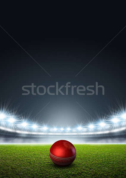 Estadio cricket pelota hierba verde Foto stock © albund