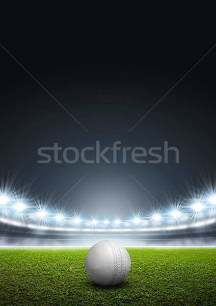 Generic Floodlit Stadium With Cricket Ball Stock photo © albund