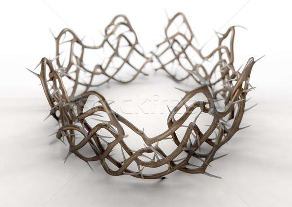 Crown Of Thorns Stock photo © albund