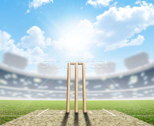 Kriket stadyum ayarlamak yukarı Stok fotoğraf © albund