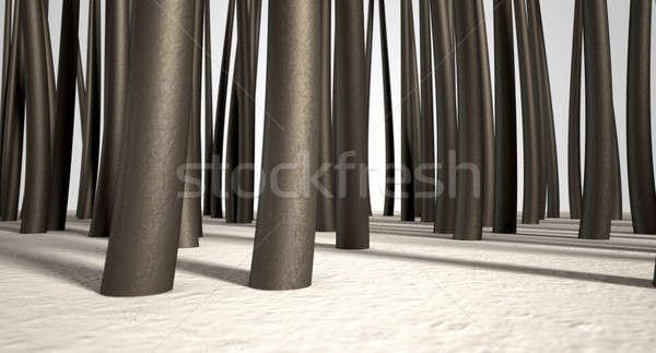 Microscopic Hair Roots Stock photo © albund