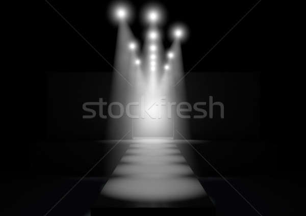 Spotlit Runway Stock photo © albund