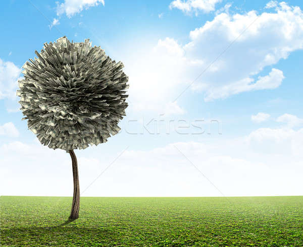Money Tree US Dollar Stock photo © albund