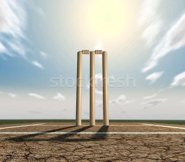 Cricket Pitch And Wickets Front Stock photo © albund