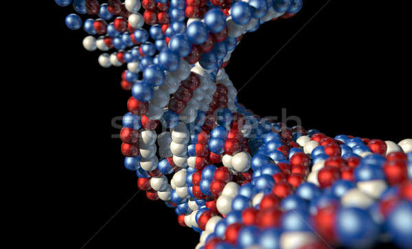 DNA Atom Stem Stock photo © albund
