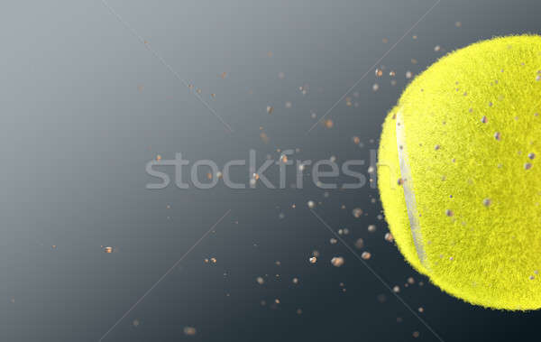 Tennis Ball Stock photo © albund