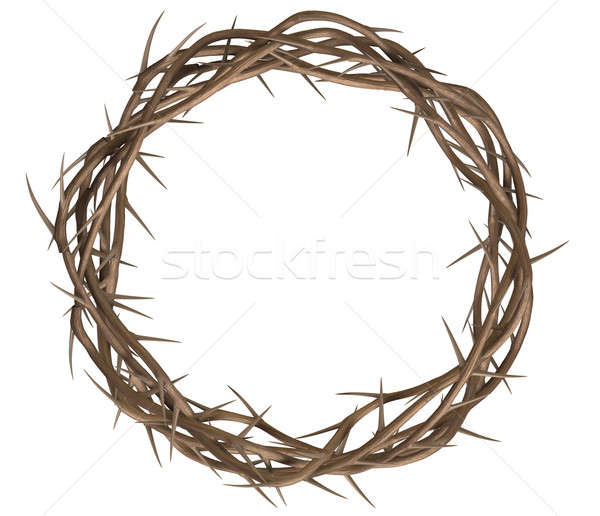 Crown Of Thorns Top Stock photo © albund