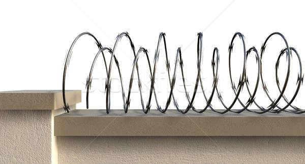 Wall With Razor Wire Stock photo © albund