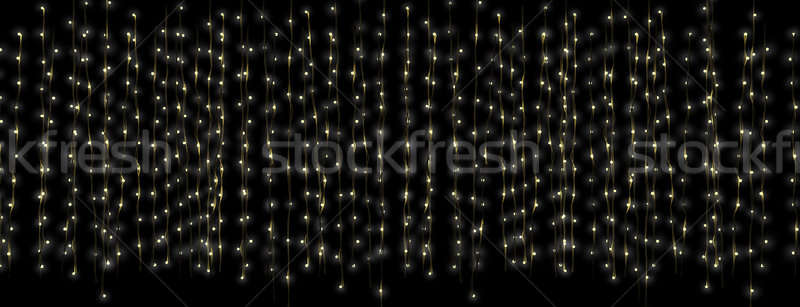 Fairy Light Curtain Long Stock photo © albund