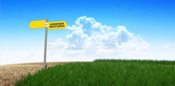 Green Pastures Sign Stock photo © albund