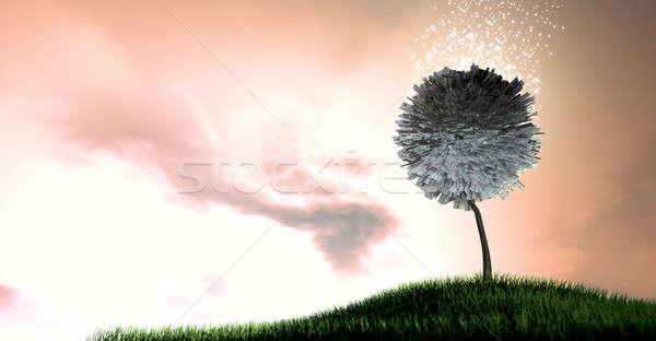 Magical Euro Money Tree Stock photo © albund