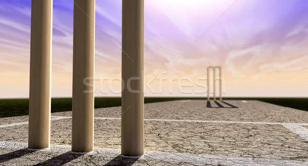 Cricket Wickets On Pitch Horizon Both Perspective Stock photo © albund