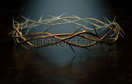 Stock photo: Crown Of Thorns Gold Casting