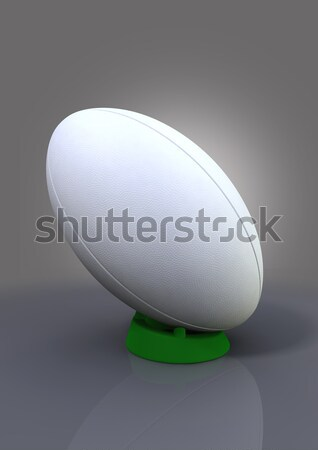 Rugby Ball On A Kicking Tee Stock photo © albund
