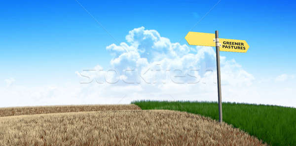 Green Pastures Sign Stock photo © albund