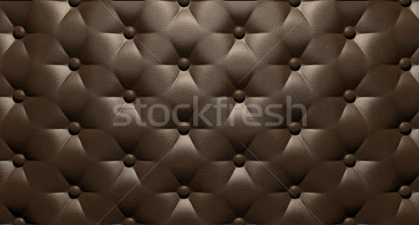 Buttoned Luxury Brown Leather Top Stock photo © albund