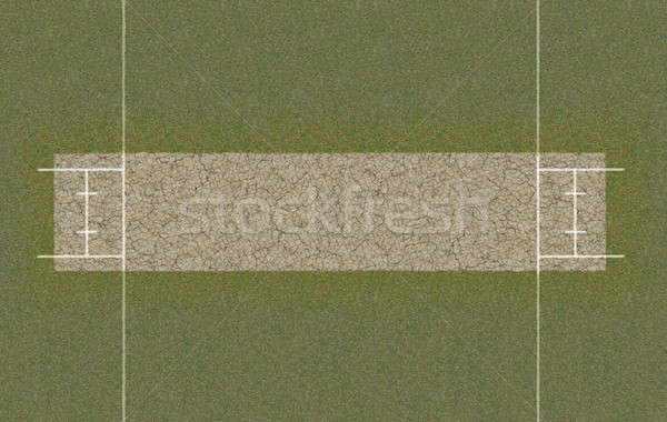 Cricket toonhoogte top direct lay-out Stockfoto © albund